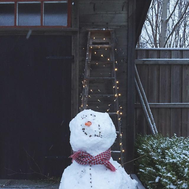 Mellan jul och nyår 2014