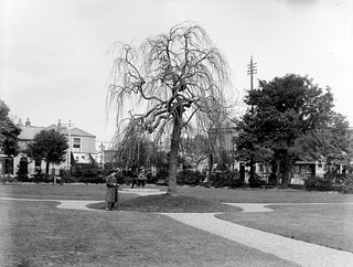 Public Park in an unknown location - but for how long???? Location Identified as Sandymount Dublin