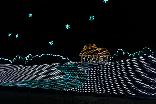 Flower Fantasy 2015 illumination at Ashikaga Flower Park 26