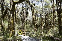Arthur's pass Nouvelle-zélande