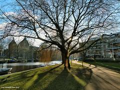 Alexanderkade Amsterdam, 1-2-2015