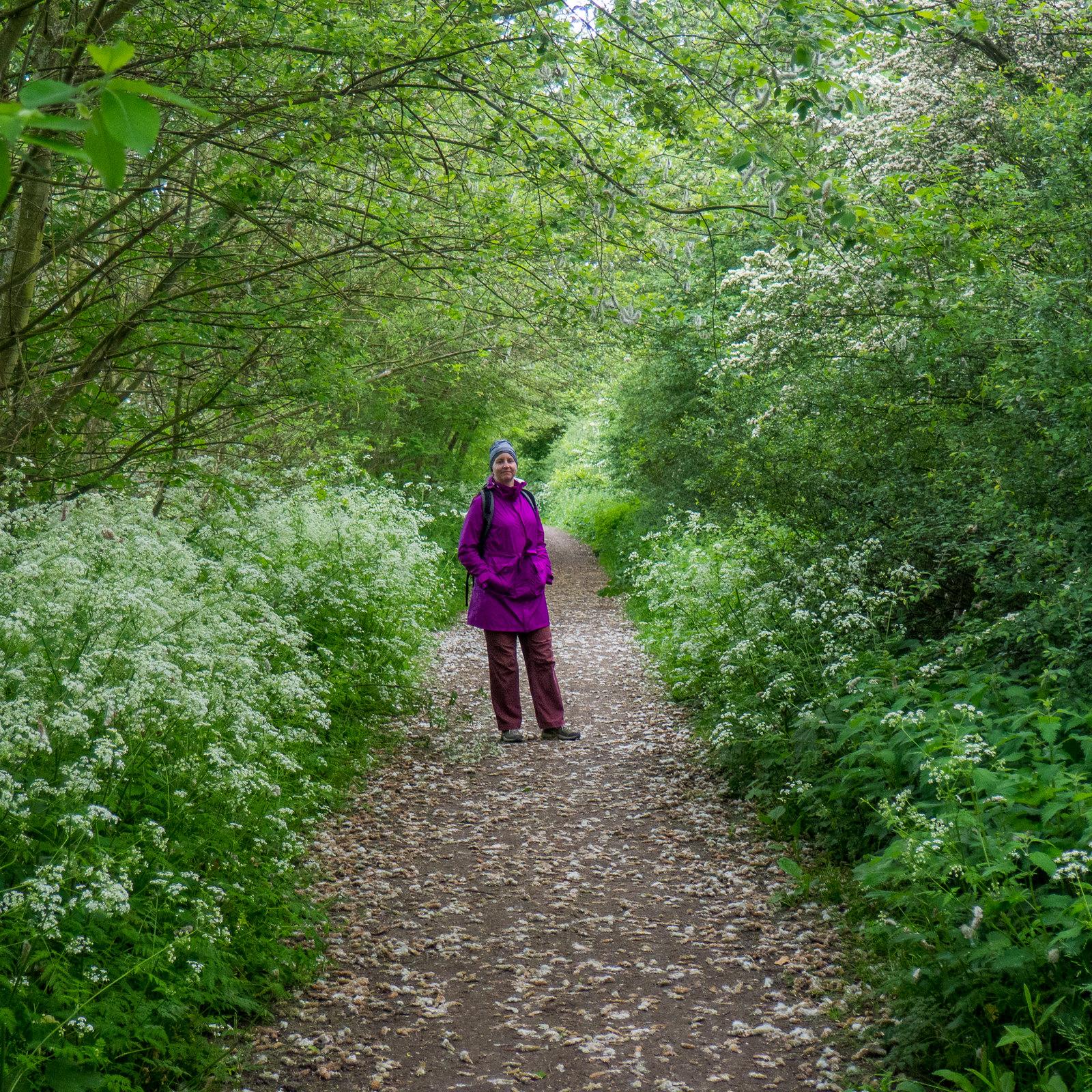 """P5250163 www.walkingclub.org.uk/book_3/walk_61/index.shtml"""" rel=""""nofollow www.walkingclub.org.uk/book_3/walk_61/index.shtml"""