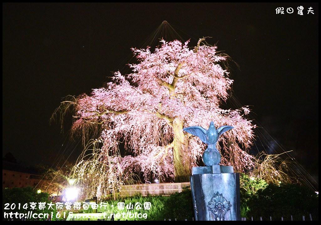 2014京都大阪賞櫻自由行.圓山公園DSC_0674