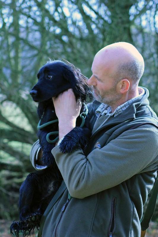 Gundog Training - Ripley, Surrey