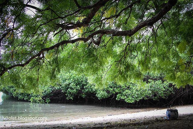 Bama Beach4-8647rw