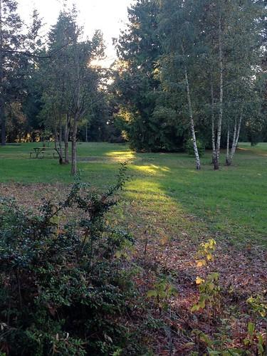 Autumn-Walk-8