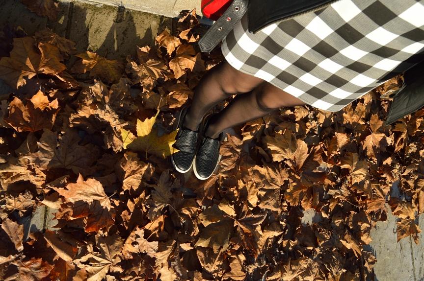lara-vazquez-mad-lula-streestyle-shoes
