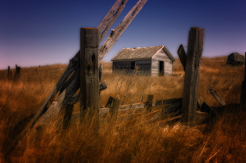 grass fence northdakota april prairie earlyspring greatplains abandonedfarmstead mortoncounty nikond4 nikkor247028