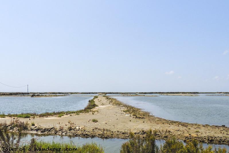 Parc Natural del Delta de l'Ebre