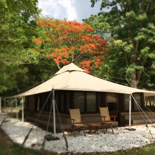 Amanwana tent