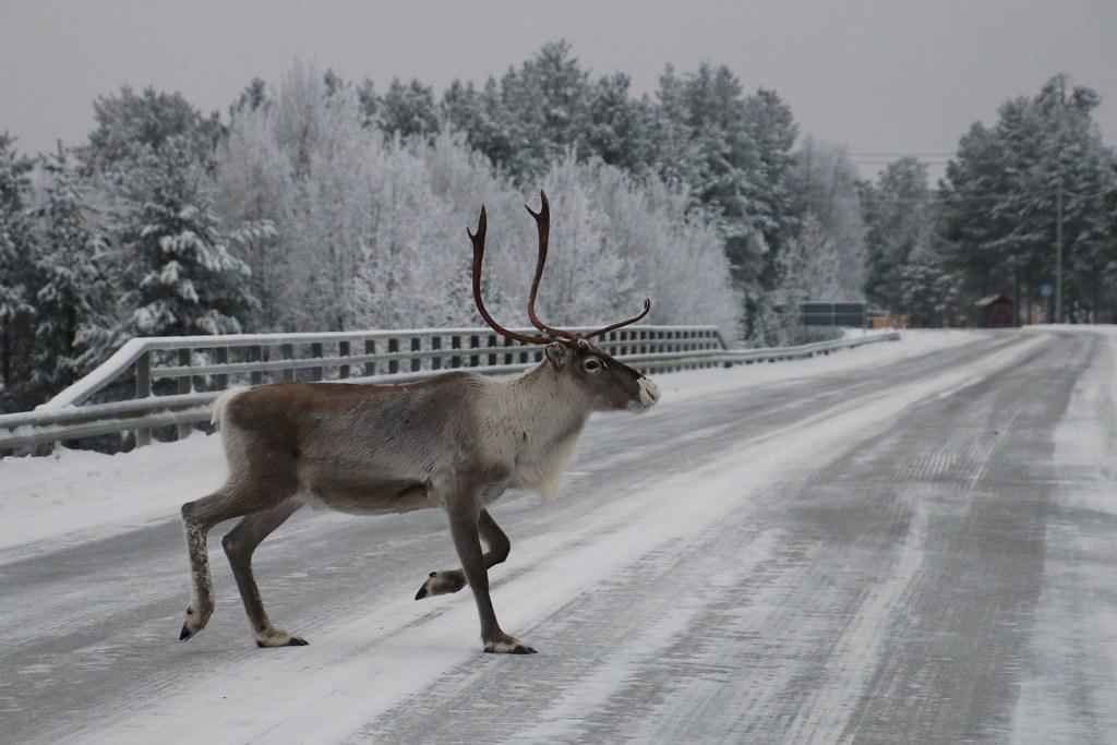 Finland121
