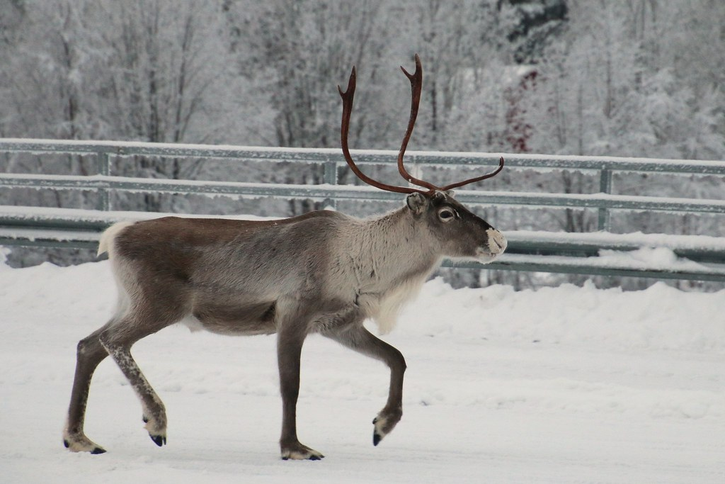 Finland122