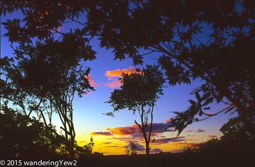 sunset 120 mamiya film mediumformat geotagged costarica monteverde filmscan mamiya7ii wildernesstraveltour geo:lat=1031322 geo:lon=84823661