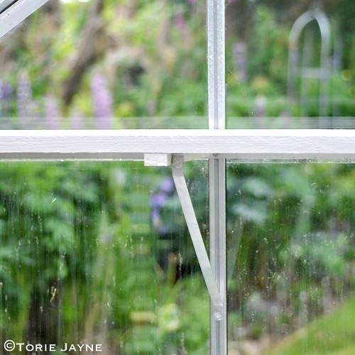 Greenhouse shelf 3