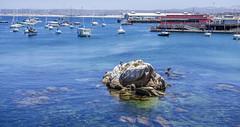 By Monterey Pier 1