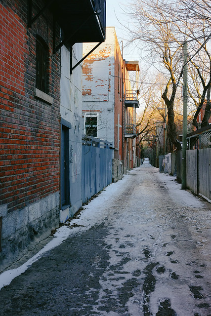 icy alley