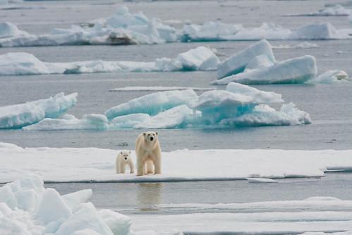 北極融冰。(來源:Outward_bound)
