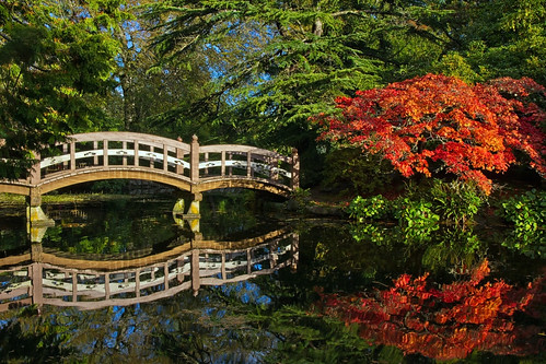 park bridge trees light red orange sunlight lake canada reflection tree green fall tourism nature water colors beautiful beauty leaves gardens forest canon reflections garden island coast interesting rainforest colorful colours bc view natural bright path relaxing trails peaceful tranquility victoria tourist vancouverisland trail walkway views greens serene mapletree oranges maples westcoast brilliant beautifulbc greatervictoria canon7d
