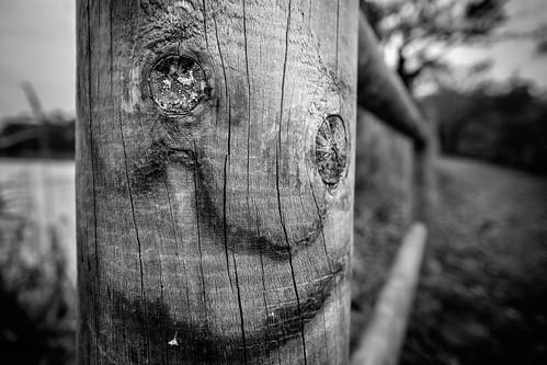 Smiling pole