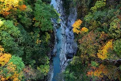 幾許秋涼  Chill   valley ~秋田,小安峽 Oyasu-kyo Ravine,  Akita~