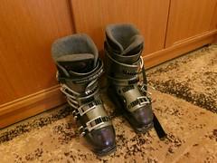 Lyžařské boty Dalbello - titulní fotka