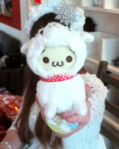 Alpaca Gift