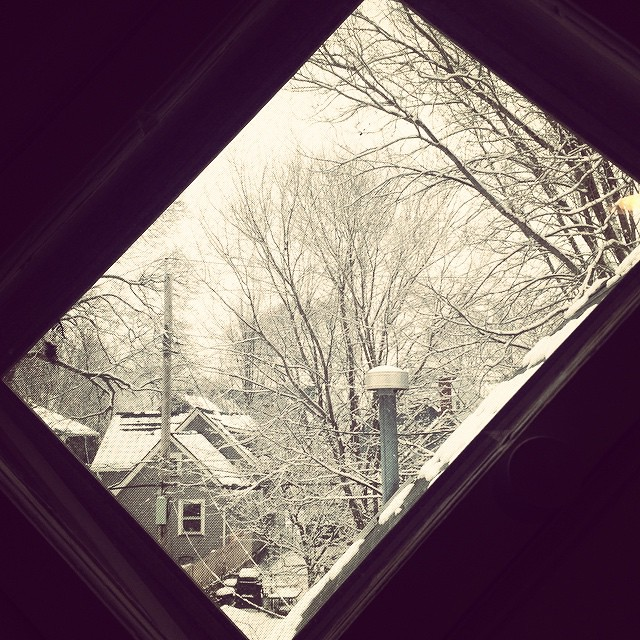 Snowy day through our funny little window.