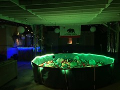 swimming pool(0.0), music venue(0.0), snooker(0.0), stage(0.0), disco(0.0), nightclub(0.0), cue sports(0.0), recreation room(1.0), games(1.0),