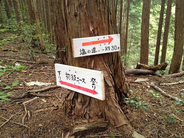 納古山 初心者コース・塩の道分岐