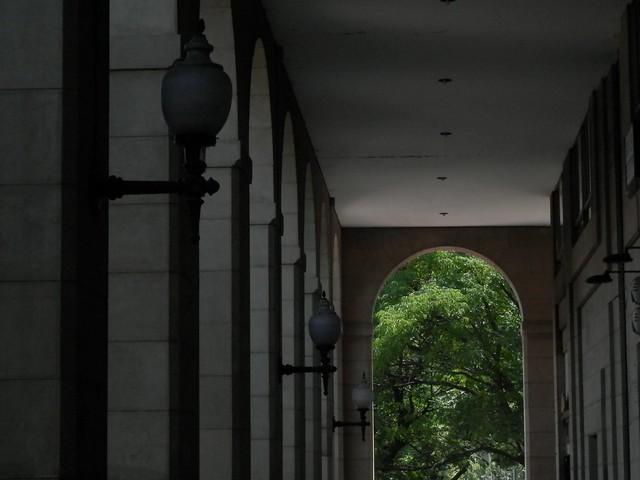 Camino de la plaza
