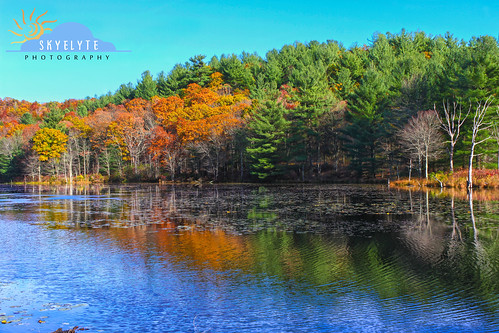 Autumn Reflections at Rifle Range Pond
