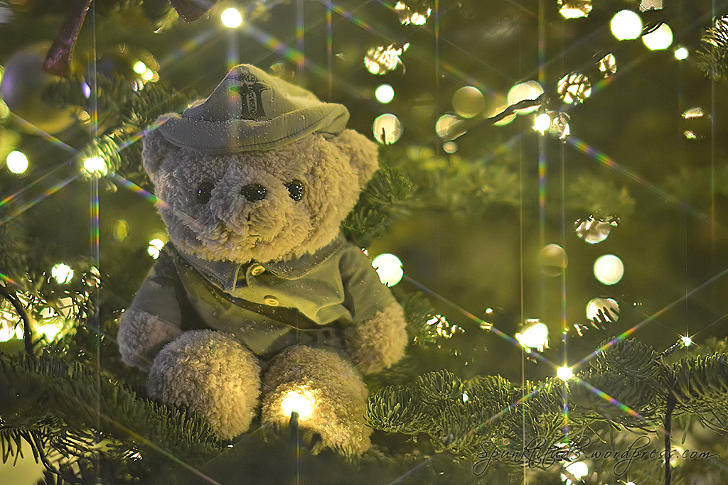 Christmas Teddy