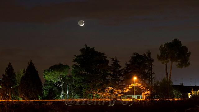Urban moon
