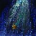 Merman by Free Range Photos