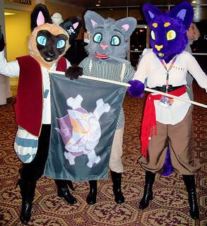 The Feline Pirates of Plunder!