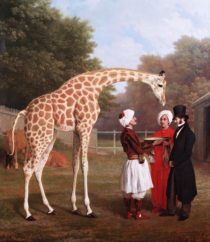 Jacques-Laurent Agasse - Nubian Giraffe (1827)
