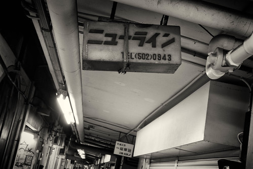 2014.11.30(P2020652LR_FZ1000_Silver Efex