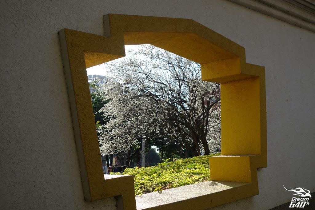 台北賞梅-志成公園+士林官邸40