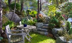 Mediterranean inspired garden