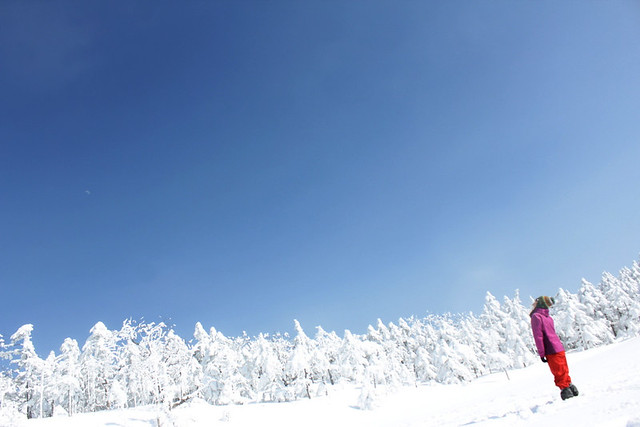 2014-03-09_00108_北横岳