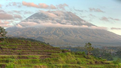 bali ricepaddies hdr riceterraces mountagung candidasa gunungagung