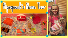 Thumbnail image for My Hamster's Home Tour