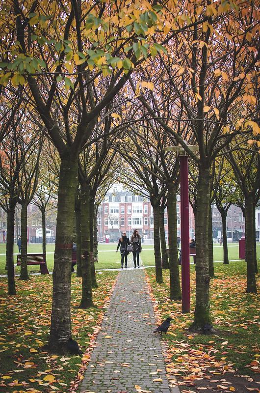 A Fall stroll through Amsterdam's Museumplein.