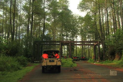 Perjalanan Menuju Hutan Cikole Bandung