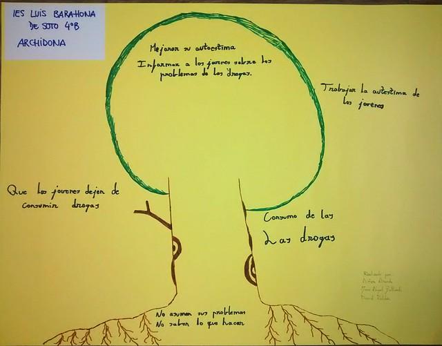 IES LUIS BARAHONA DE SOTO (5)