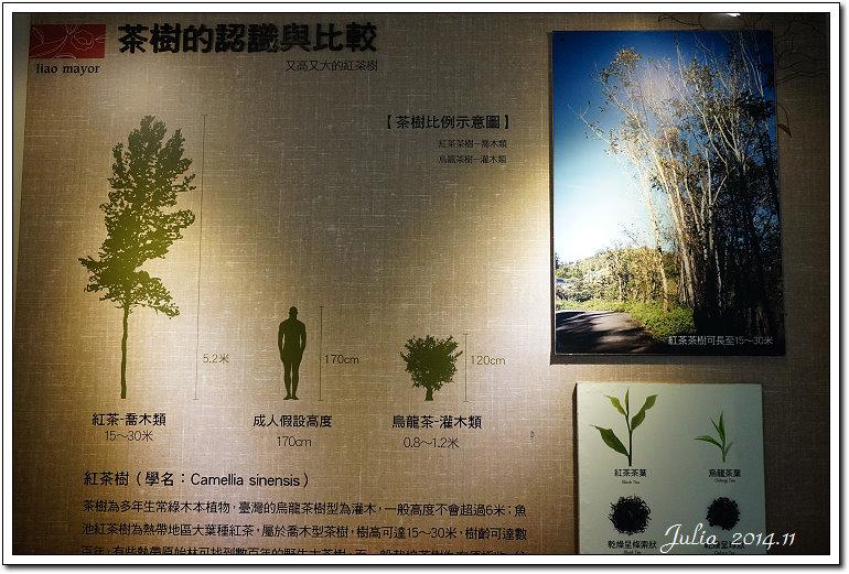 日月老茶廠、三育、廖鄉長~ (15)