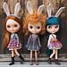 Bunny sets by MforMonkey