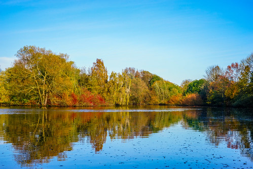 autumn favorite lake color reflection fall nature water colors beautiful beauty 35mm wow germany landscape deutschland photography colorful view shot outdoor sony magic hamburg herbst natur fine best alpha a7 magicmoment discover mirroring naturesfinest alpha7 finegold lovelyphotos favoritesonly dazzlingshots