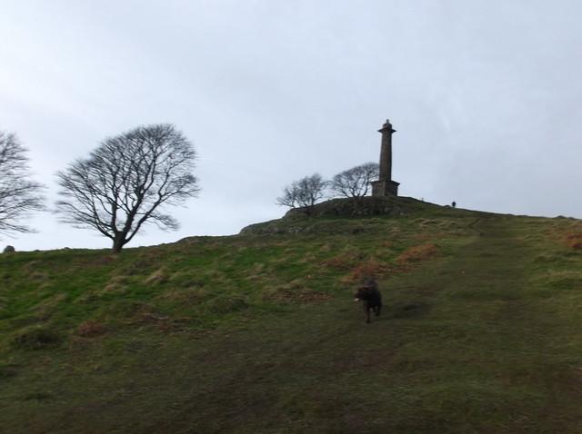 breidden hill 022