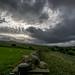 DSCC_0238 - Autumn clouds